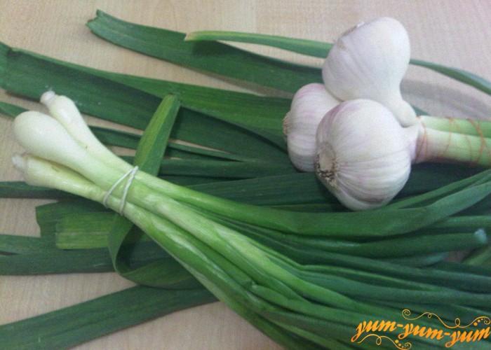 зеленый лук и молодой чеснок для летнего борща