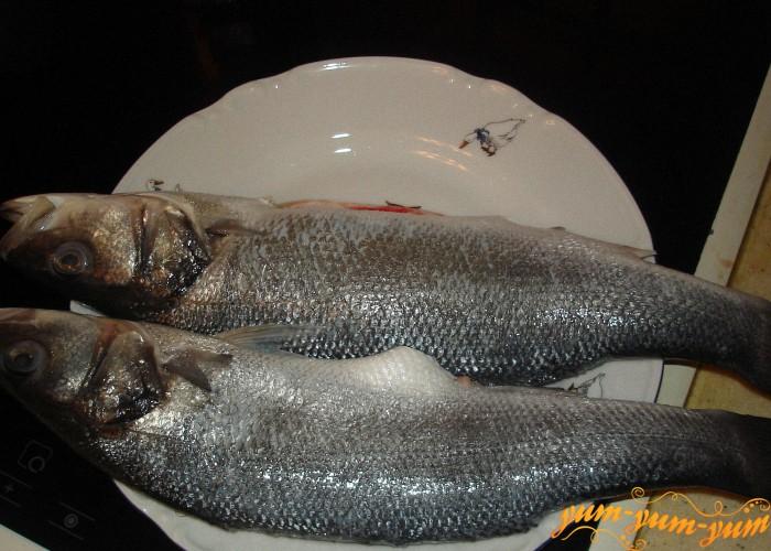 берем свежую рыбу