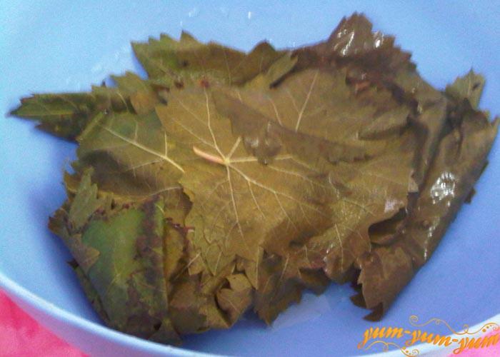 Отваренные листья охлаждаем