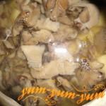 Приготовление мясного рагу с грибами в аэрогриле