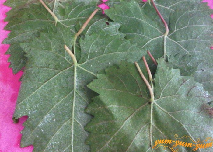 Просушиваем мытые виноградные листья