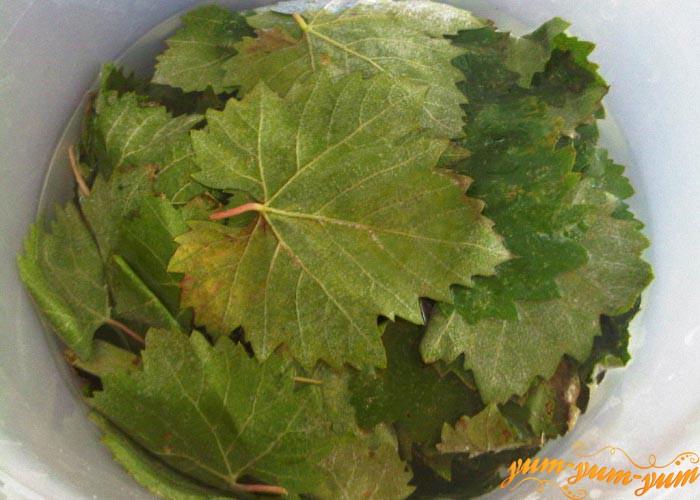 Хорошо моем и перебираем листья