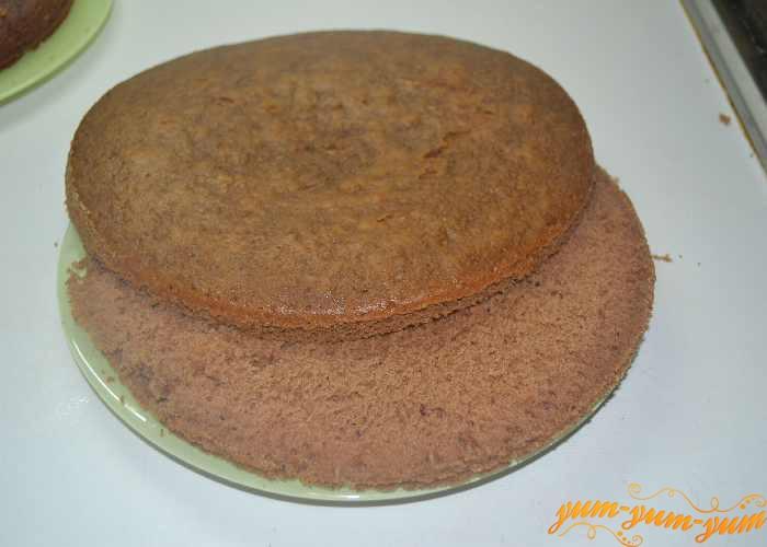Разрезаем бисквит на несколько коржей