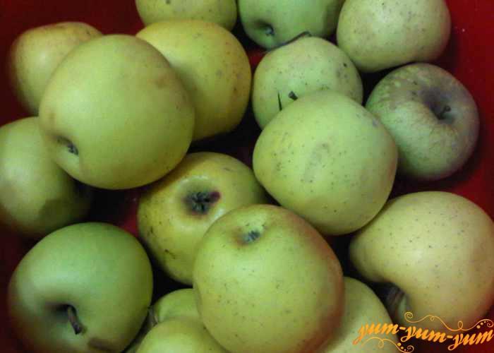 Выбираем спелые яблоки для сока