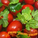Рецепт консервированных помидоров с горчицей на зиму