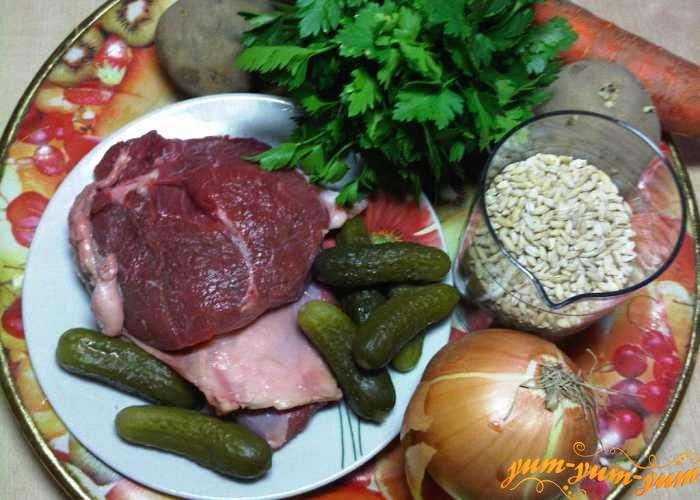 Небольшой кусочек говядины, репчатый лук, морковь, соленые огурцы и зелень