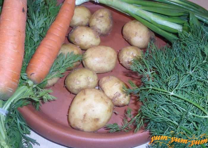 Картофель, морковь, лук и укроп для ухи из окуня