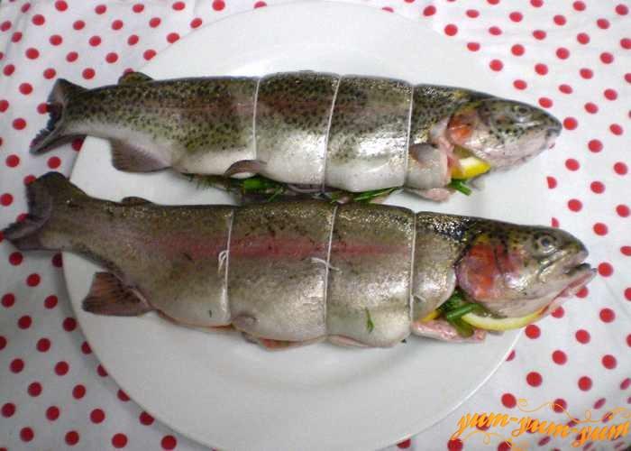 Обвязать рыбу шпагатом и положить в холод
