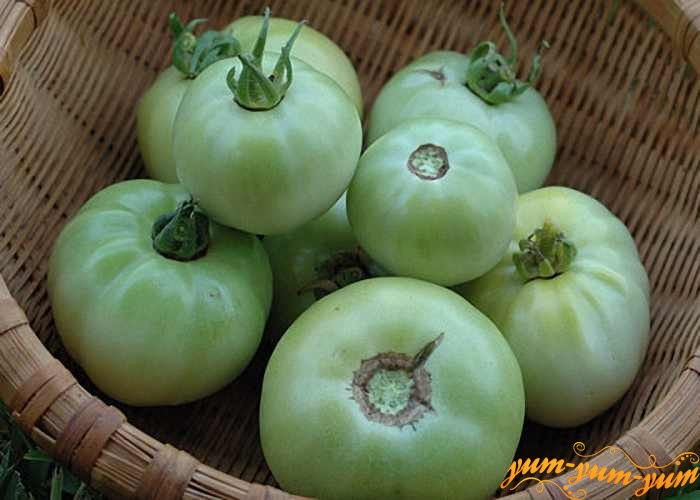 Зеленые помидоры нужно хорошо помыть, выложить в дуршлаг и дать слегка обсохнуть