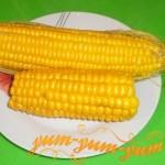 Как правильно сварить вкусную кукурузу в початках