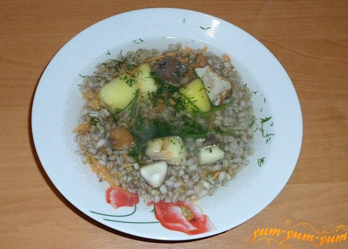 Суп из мороженных белых грибов подать к столу
