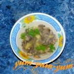 Рецепт супа из свежих лесных грибов